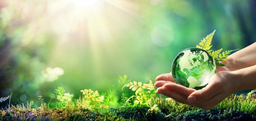 La sfida del business sostenibile*